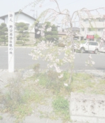 明保地区 雨情の碑